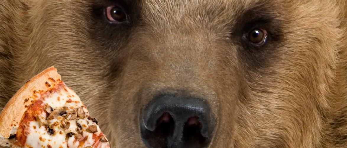 דובים בפיצריה